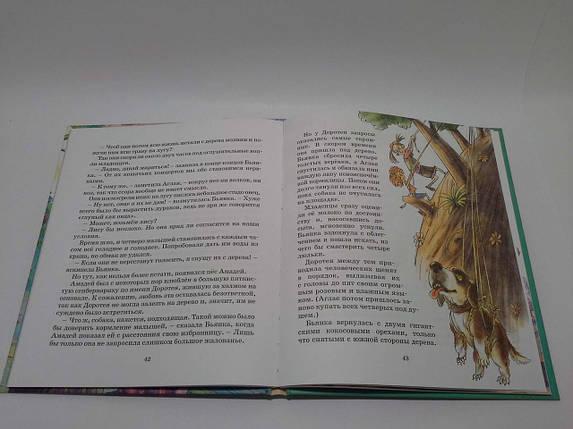 Махаон СкПо (рус) Питцорно Дом на дереве (Сказочные повести), фото 2