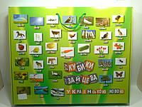 Кубики Зайцева Українською мовою ЗІБРАНІ