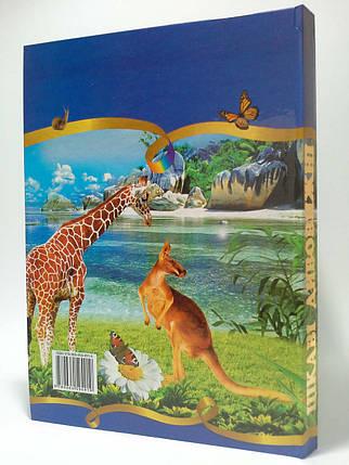 Септіма Енц Цікаві Дивовижні Ілюстрована енц для дітей, фото 2