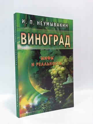Эзо Неумывакин Виноград Мифы и реальность, фото 2