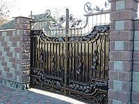 Кованые ворота (Арго)