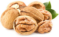 Помощь в оформлении грецких орехов на экспорт