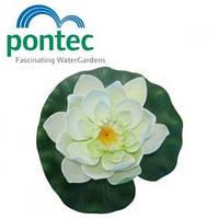 Декоративная плавающая лилия для пруда Pontec PondoLily White