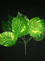 Букет листьев вышего качества (широкий)