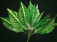 Букет листьев(зебра)