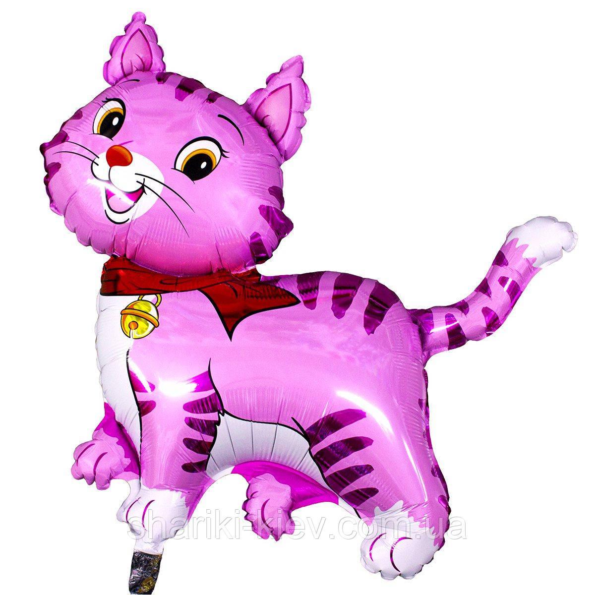 Розовый Кот Шар Гелий