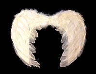 Крылья ангела белые маленькие (45Х35)