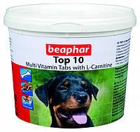 Top 10 Dog универсальный комплекс витаминов, минералов и микроэлементов Beaphar, фото 1