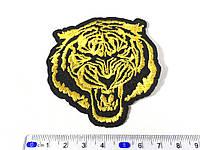 Нашивка тигр
