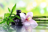 Панно орхидея фотопечать кафель, плитка 20х30см.