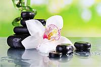 Панно СПА орхидея фотопечать кафель, плитка 20х30см.