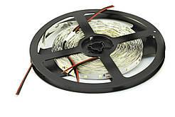 Светодиодная лента 60 led/m IP20 270Lm/m 4.8Вт 12В 3000К CMD3528 Lumex
