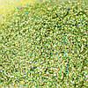 Глиттер Голограмма 02 (Салатный №601)