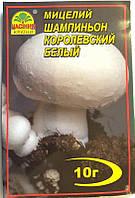 Мицелий гриба Шампиньон Королевский Белый, 10г