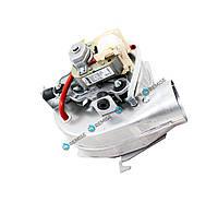 Вентилятор Ferroli Domicompact, Domina, Domitop, New Elite F24 - 39811561
