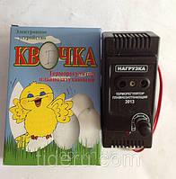 Терморегулятор для инкубатора Квочка-1 (с одной регулировкой)