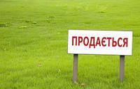Недооцененная стоимость украинской земли