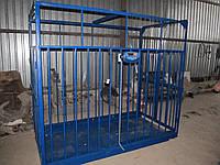 Весы для крупного рогатого скота 1200х2200х1850