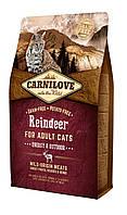 Carnilove Raindeer Energy & Outdoor корм для активных кошек, с мясом северного оленя, 2 кг