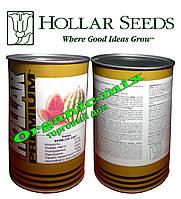 Семена арбуза Кримсон Свит, HOLLAR Premium (США), банка 500 грамм
