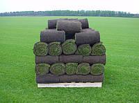 Рулонный газон Пологи
