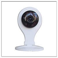 Беспроводная wi fi камера CT-K701 с записью на microSD (для домашней сети wi fi)