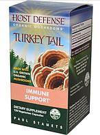 Fungi Perfecti, Иммунная защита, Траметес разноцветный, 120 вегетарианских капсул