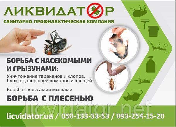 Вывести мышей в помещениях в Кременчуге и области