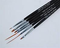 Набор кистей для рисования и росписи ногтей (6 штук).