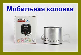 Портативная Bluetooth колонка WSTER WS-Q9