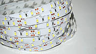 Светодиодная лента smd 5630 белый/теплый белый