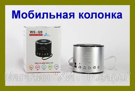 Портативная Bluetooth колонка WSTER WS-Q9 , фото 2