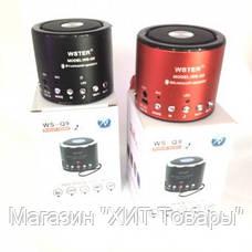 Портативная Bluetooth колонка WSTER WS-Q9 , фото 3