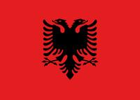 Медицинский перевод с албанского языка