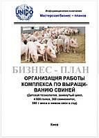Бизнес – план (ТЭО). Свиноферма. Комплекс выращивания свиней. Датская технология. Цех убоя, пр-во комбикорма 4000 голов откорма