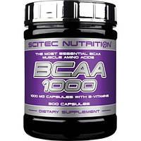 BCAA 1000 (300 таб) Scitec Nutrition