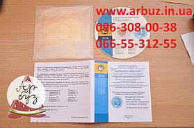 печать на дисках цена тиражирование cd дисков печать на cd dvd дисках