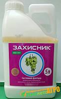 Фунгицид Захисник (аналог Топсина) 5 л, Ukravit (Укравит), Украина