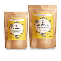 """Гранола """"Мёд и семена Чиа"""" 200 гр"""