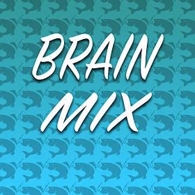 Бойлы Brain mix 16-20 mm