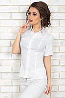 Белая Рубашка Классика короткий рукав