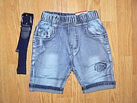 Джинсовые бермуды на мальчиков оптом, Child hood ,74-104 рр