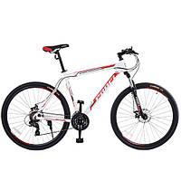 Спортивный велосипед Profi (G29BASIS) (A29-1)