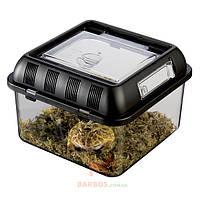 Фаунариум пластиковый Exo Terra Breeding Box (Экзо терра, Хаген) Exo-Terra (Hagen) (21,2 x 21,2 x 15,5 см)