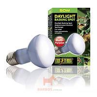 Лампа неоновая-зеркальная для террариума Exo Terra Daylight Basking Spot (Экзо терра, Хаген) Exo-Terra (Hagen) (R20/50 W)