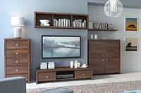 Набор мебели для гостиной BRW KASPIAN II