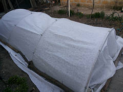 Агроволокно - панацея от заморозков и вредителей