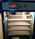 Инкубатор фермерский PRO HHD 352 автомат (на 400 яиц), фото 7