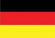 Срочный письменный перевод на немецкий язык