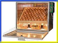 Инкубатор с автоматическим переворотом и регулировкой влажности (60 яиц)